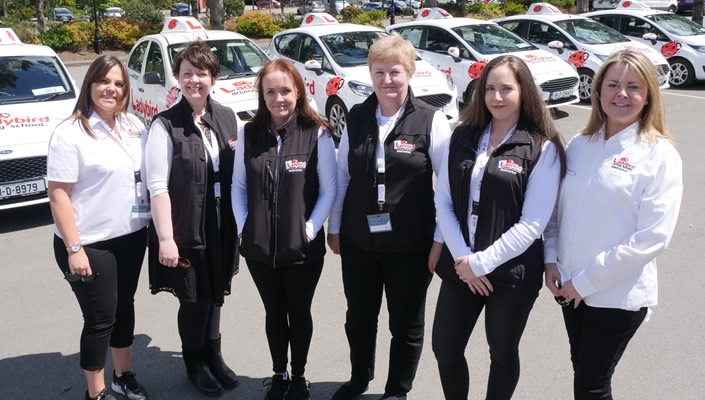 Become a Driving Instructor Dublin Ladybirds